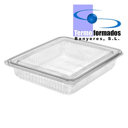 estuche-envase-loncheado-transparente-H27-grande-pet-termoformados-banyeres-envase-plastico