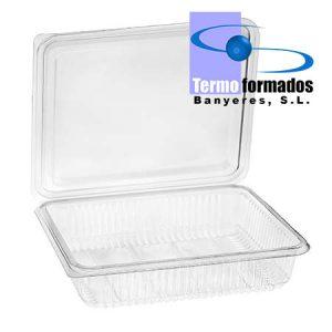 estuche-envase-loncheado-transparente-H40-grande-abierta-pet-termoformados-banyeres-envase-plastico